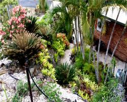 safari_gardens_projects_garden_path